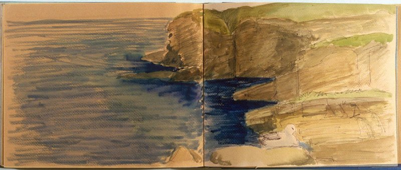 Cliff Landscape with Bird, seventy-fifth image from Travel Sketchbook of Antarctica