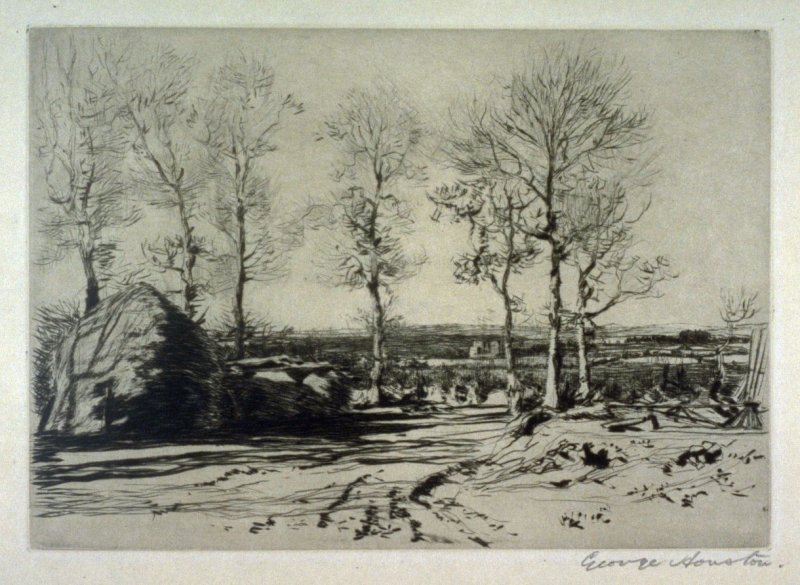 [landscape with a row of trees]