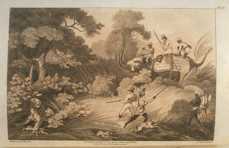 Shooters Coming by Surprise on a Tiger, pl. 20 in the book, Oriental Field Sports … (London: Edward Orme and B. Crosby and Co., 1808), vol. 1