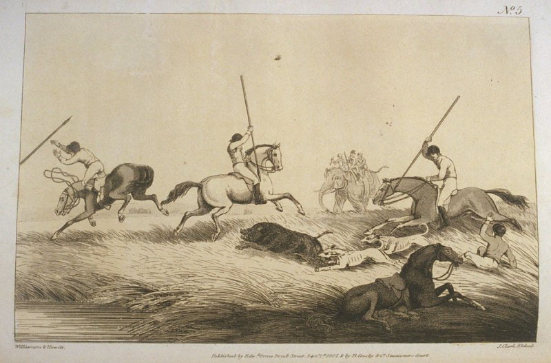 The Hog at Bay, pl. 5 in the book, Oriental Field Sports … (London: Edward Orme and B. Crosby and Co., 1808), vol. 1