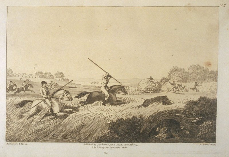 The Chase After a Hog, pl. 3 in the book, Oriental Field Sports … (London: Edward Orme and B. Crosby and Co., 1808), vol. 1