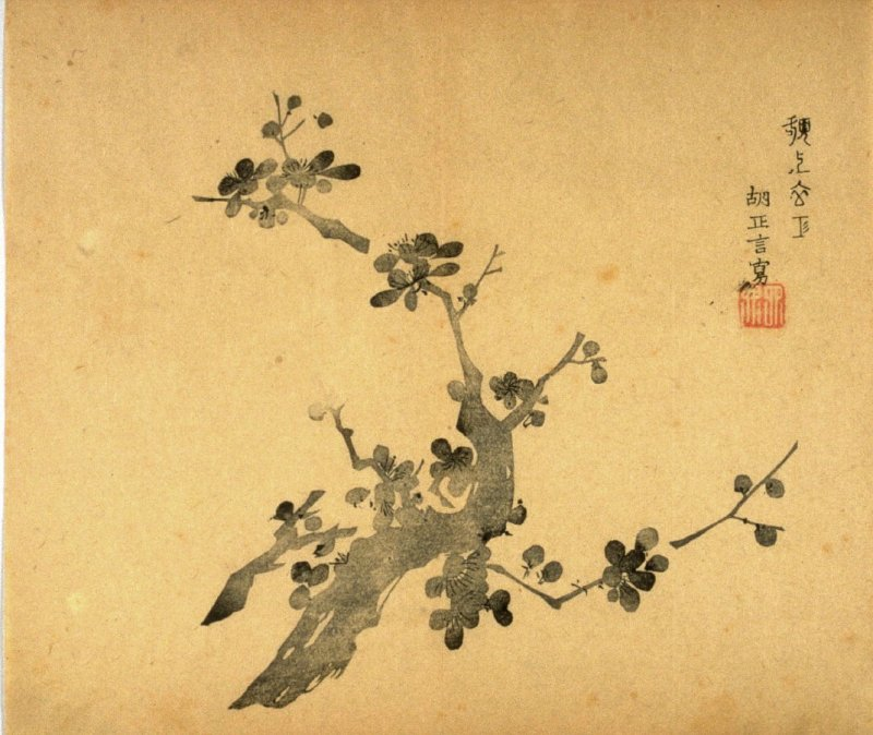 Flowering Plum , No.10 from the Volume on Plums - from: The Treatise on Calligraphy and Painting of the Ten Bamboo Studio