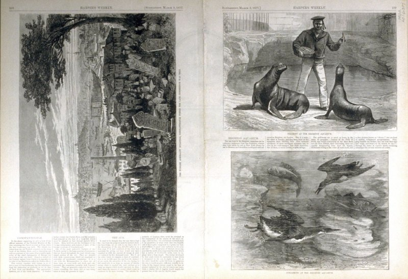 Portraits of George Washington, from Harper's Weekly, 3 March 3, 1877