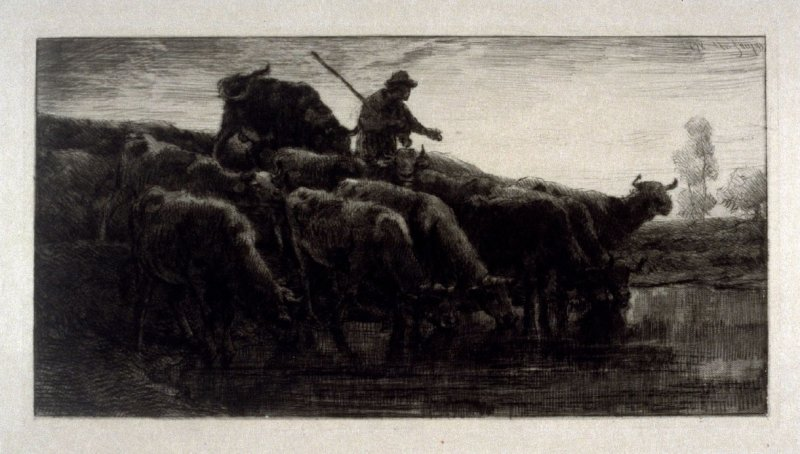 1 Print of be titled 1878 (cattle drinking at pond - with herdsman)