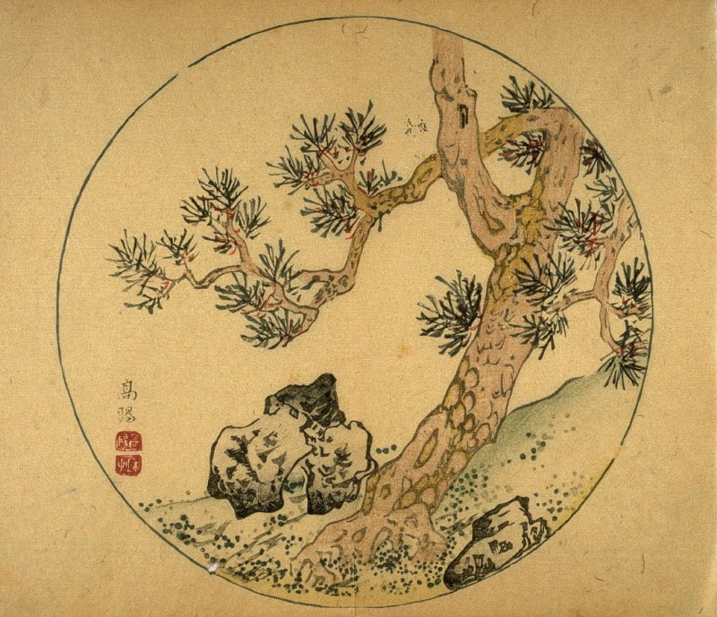 Pine Tree and Rocks, No.17 from the Volume on Round Fans - from: The Treatise on Calligraphy and Painting of the Ten Bamboo Studio