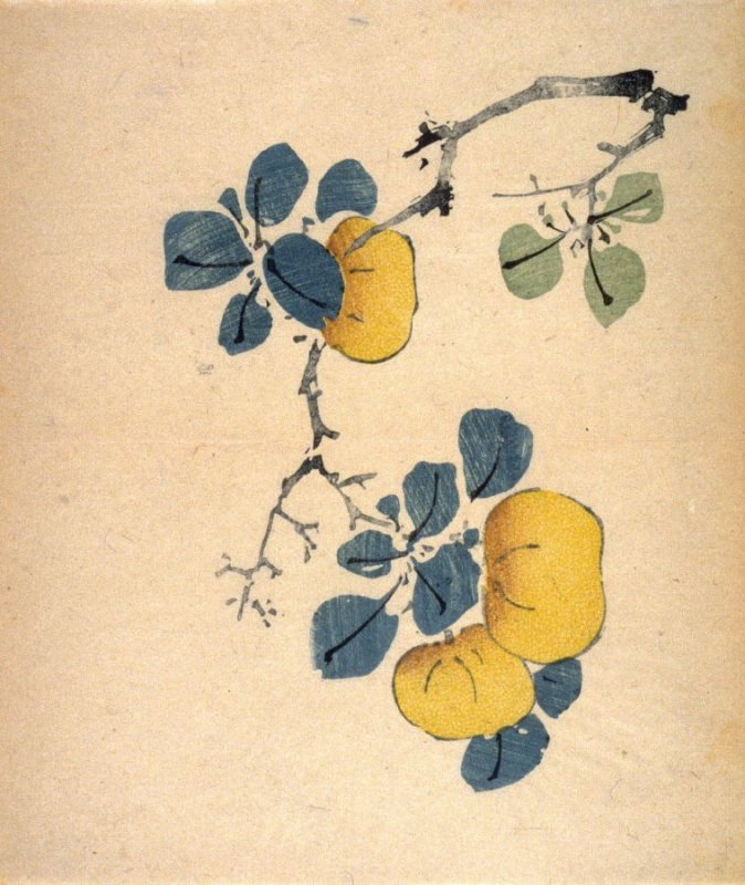 Branch of Three Tangerines, No.11 from the Volume on Fruit - from: The Treatise on Calligraphy and Painting of the Ten Bamboo Studio