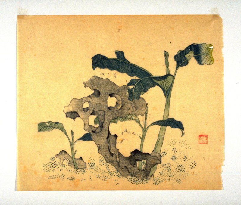Banana tree and stones, No.10 from Volume I(1+2) on Miscellaneous Subjects - from: The Treatise on Calligraphy and Painting of the Ten Bamboo Studio