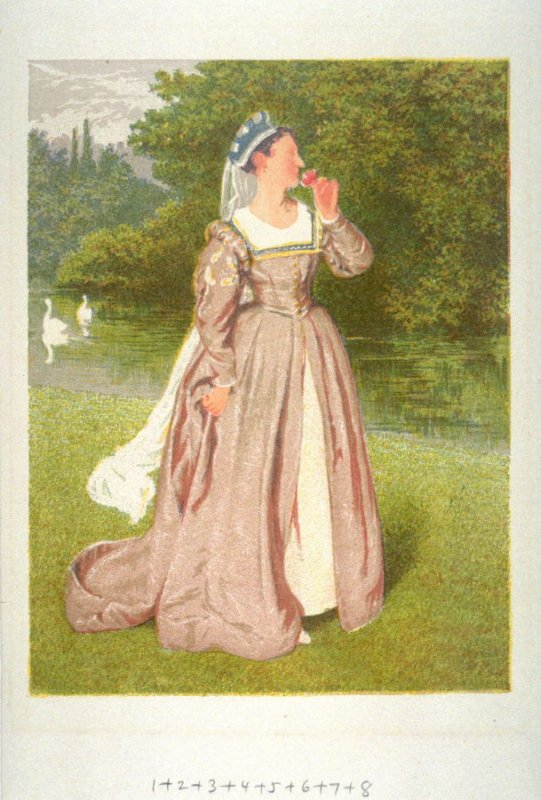 "One of 16 plates printed in chronological order according to color, called ""Dignity and Beauty"""