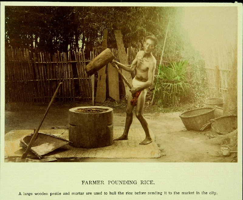 Farmer Pounding Rice