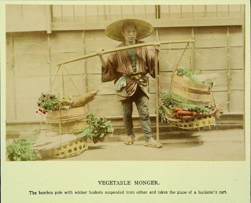 Vegetable Monger