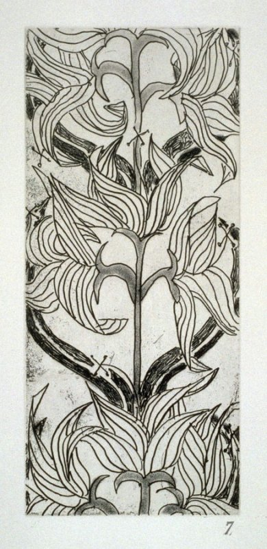 Lilies, plate 7 from the portfolio The Joy of Ornament (Oakland: Crown Point Press, 1980)