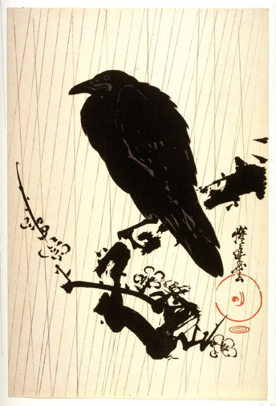 Crow Seated on Plum Branch in Rain