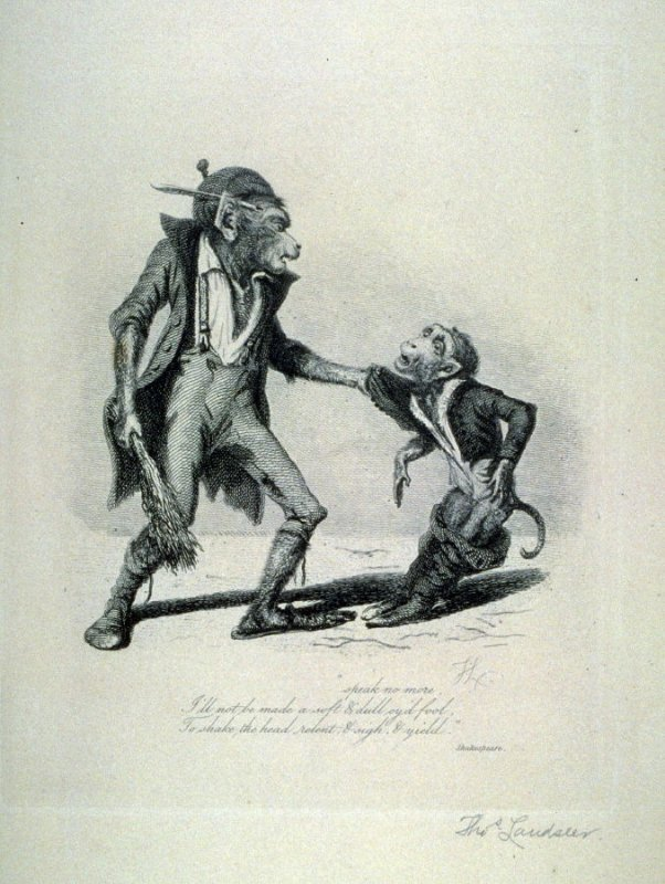 Phlebotomy, from the series 'Monkeyana or Men in Miniature'