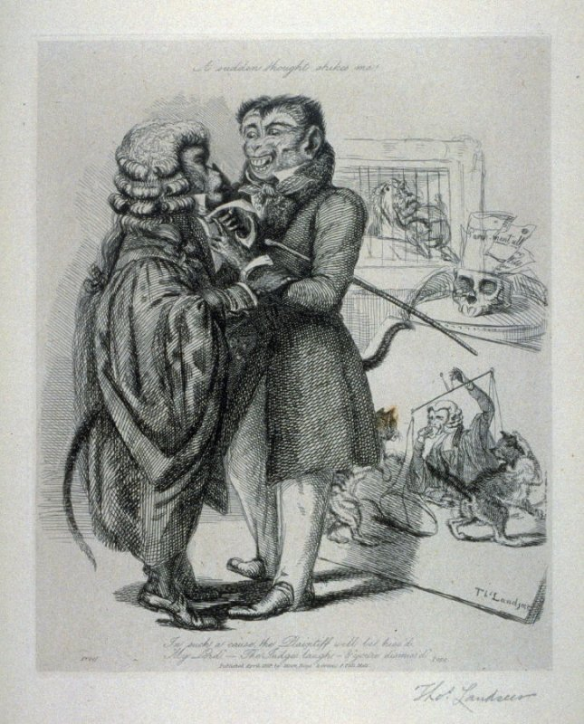Litigation, from the series 'Monkeyana or Men in Miniature'