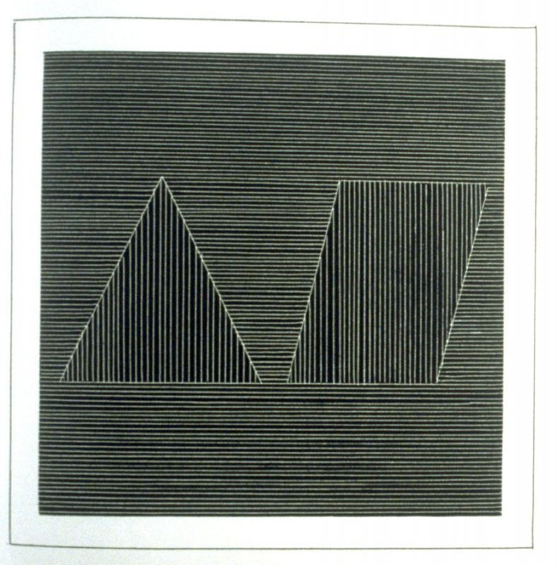 Plate 18 in the book Six geometric figures and all their combinations using white lines in two directions (New York: Parasol Press Ltd. :1980), vol. 2 (of 2) ( white on black)