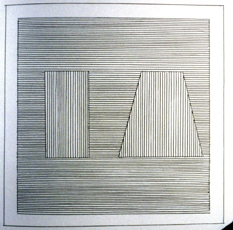 Plate 19 in the book Six geometric figures and all their combinations using black lines in two directions (New York: Parasol Press Ltd. :1980), vol. 1 (of 2) (black)