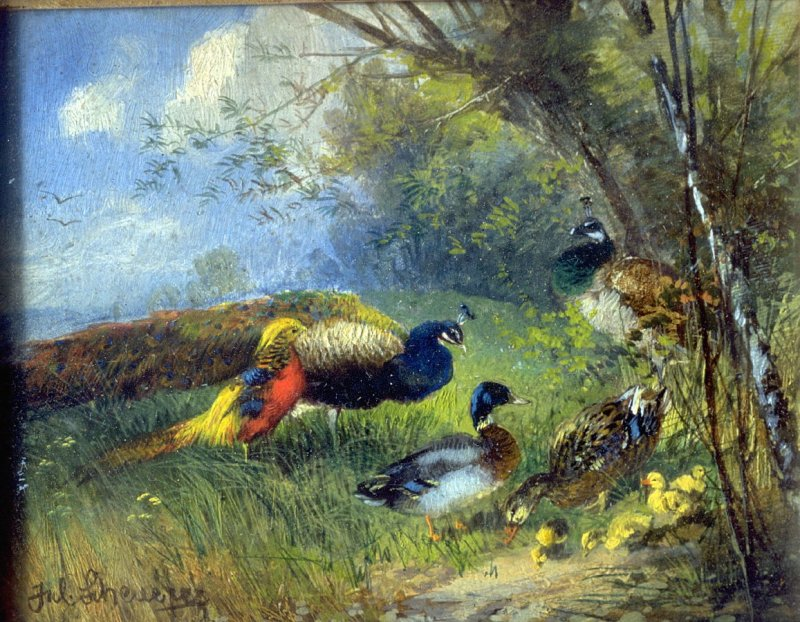 Untitled (Landscape with Peacock and Ducks)