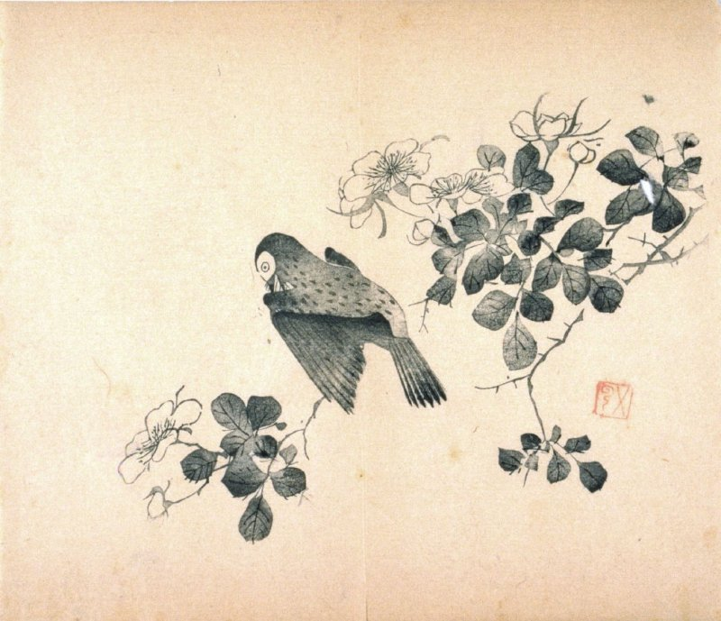 Bird on Rose Bush, No.5 from the Volume on Birds - from: The Treatise on Calligraphy and Painting of the Ten Bamboo Studio
