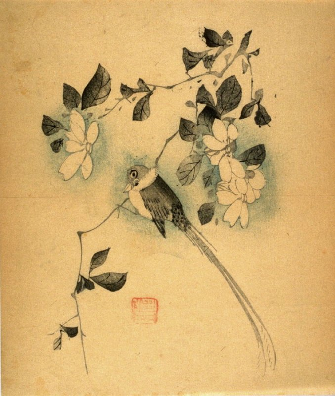 Long-tailed Bird, No.7 from the Volume on Birds - from: The Treatise on Calligraphy and Painting of the Ten Bamboo Studio