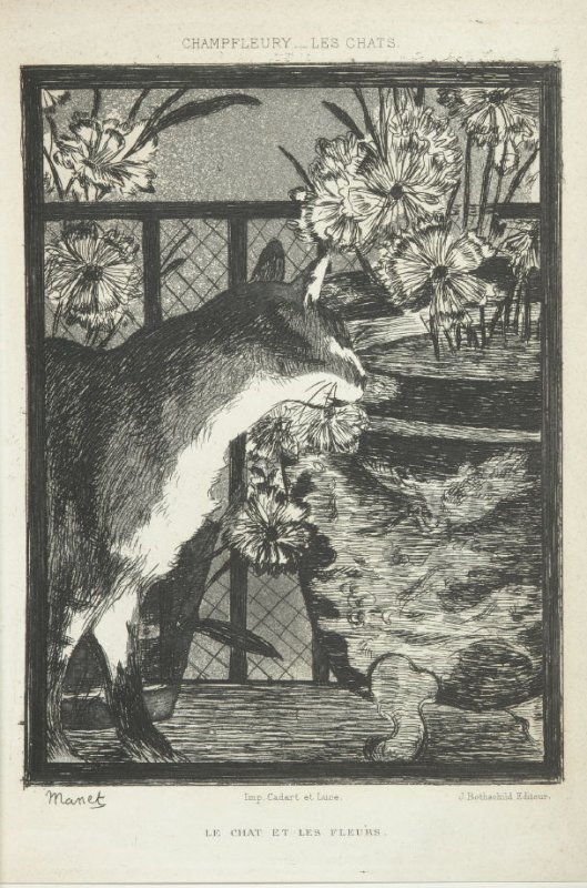 """Le chat et les fleurs (the cat and the flowers),"" pg. 40, in the book Les Chats (Cats) by Champfleury (Paris: J. Rothschild, 1870)."
