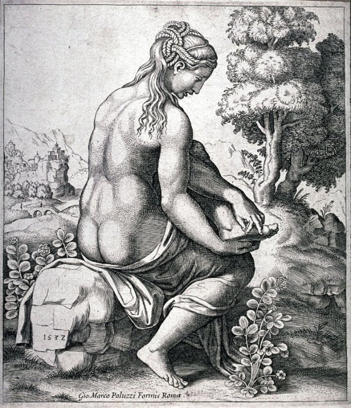 Venus Wounded by the Thorns of a Rose