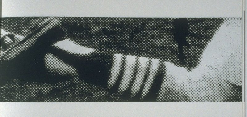 Untitled (enlarged detail of foot and leg), pl. 5 from the book A Scratch on the Negative (Oakland: Crown Point Press, 1974)