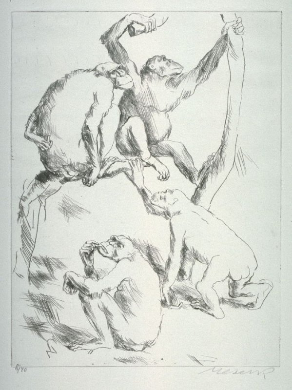 One of 12 Etchings of Animals: [Monkeys]