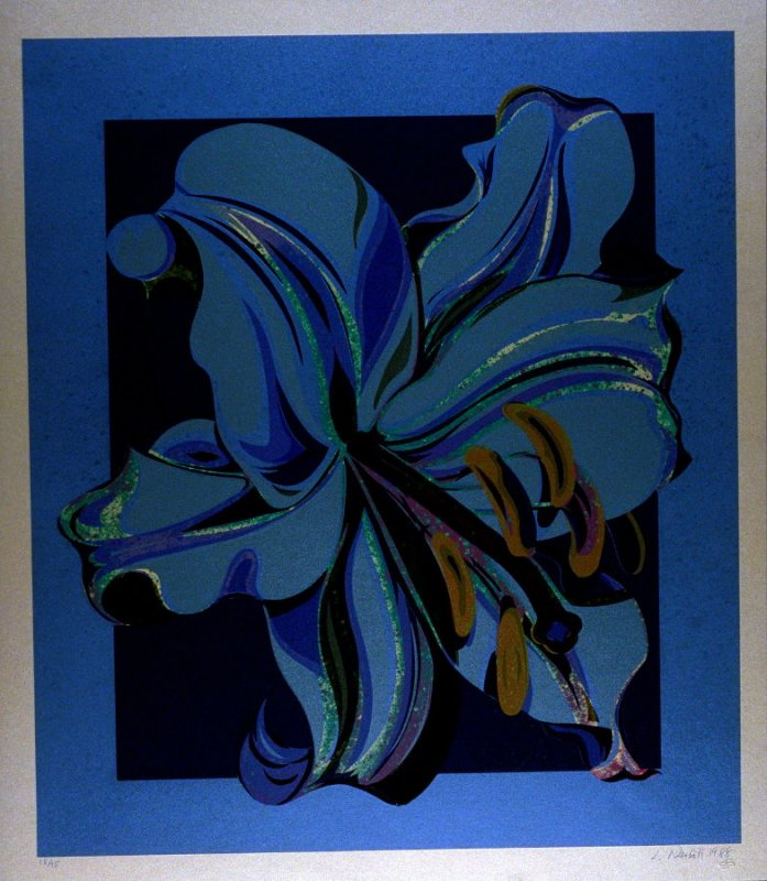 Copper Lily from the suite Nocturnes - The Lily