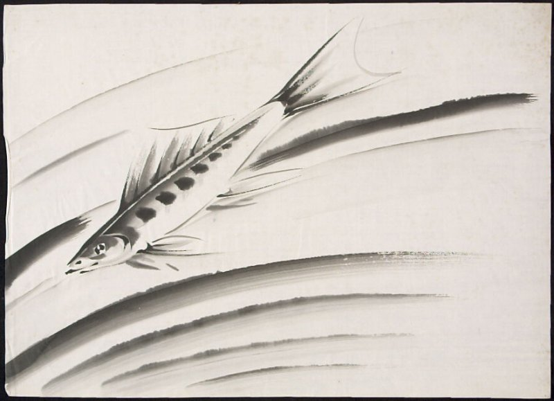 Untitled (Flying Fish Study)