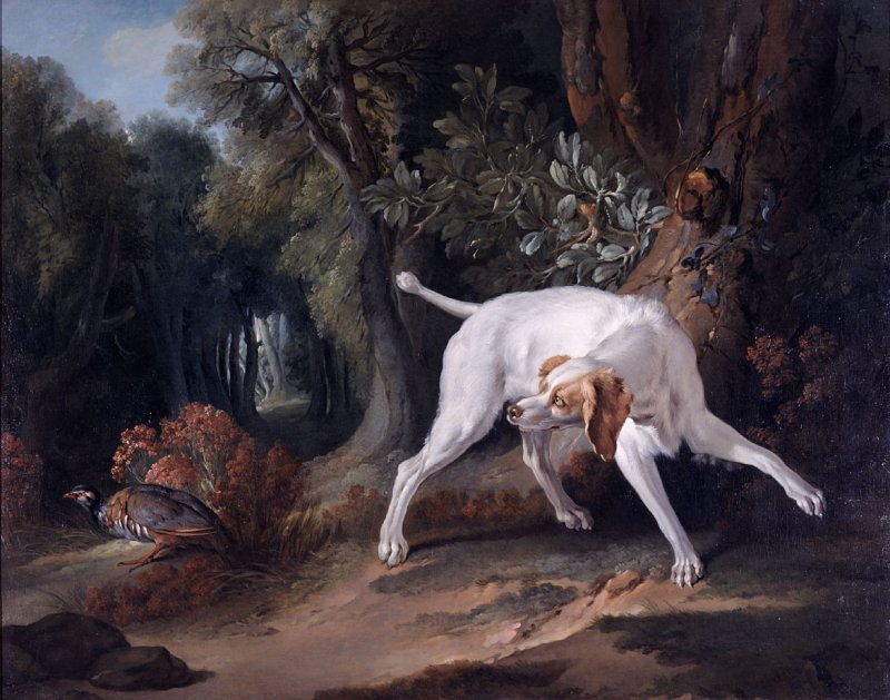 Pointer and Partridge in a Landscape