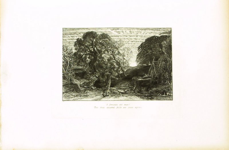 """""""O fortunate old man..."""",first illustration for Eclogue 1, opposite page 18 in the book An English Version of the Eclogues of Virgil by Samuel Palmer (London: Seeley & Company, 1883)"""