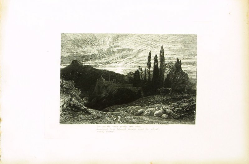 """""""But see, the weary-pacing oxen, slow..."""", illustration for Eclogue 2, opposite page 30 in the book An English Version of the Eclogues of Virgil by Samuel Palmer (London: Seeley & Company, 1883)"""