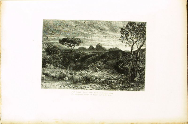 """""""Scarce with her rosy fingers had the dawn..."""", first illustration for Eclogue 8, opposite page 76 in the book An English Version of the Eclogues of Virgil by Samuel Palmer (London: Seeley & Company, 1883)"""