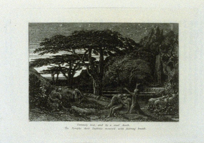 """""""Untimely lost and by a cruel death…"""", illustration for Eclogue 5, opposite page 54 in the book An English Version of the Eclogues of Virgil by Samuel Palmer (London: Seeley & Company, 1883)"""
