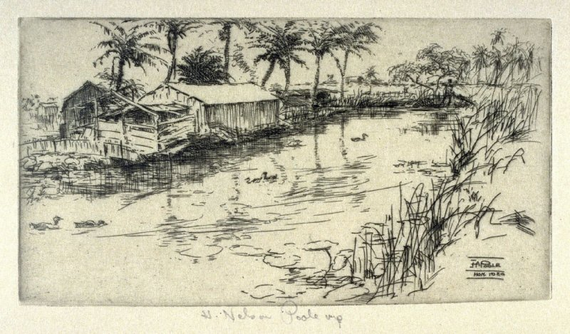 Duck Pond from the Honolulu series