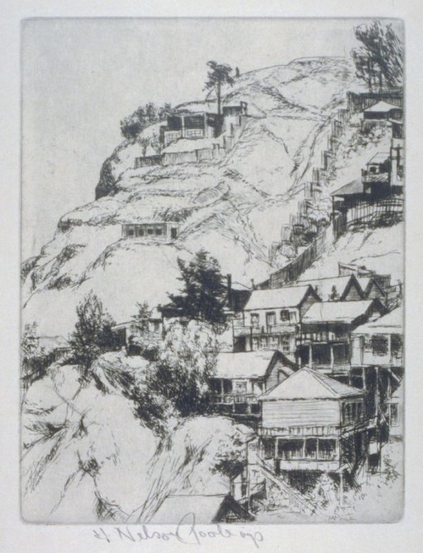 Northeast Slope of Telegraph Hill from the San Francisco Series