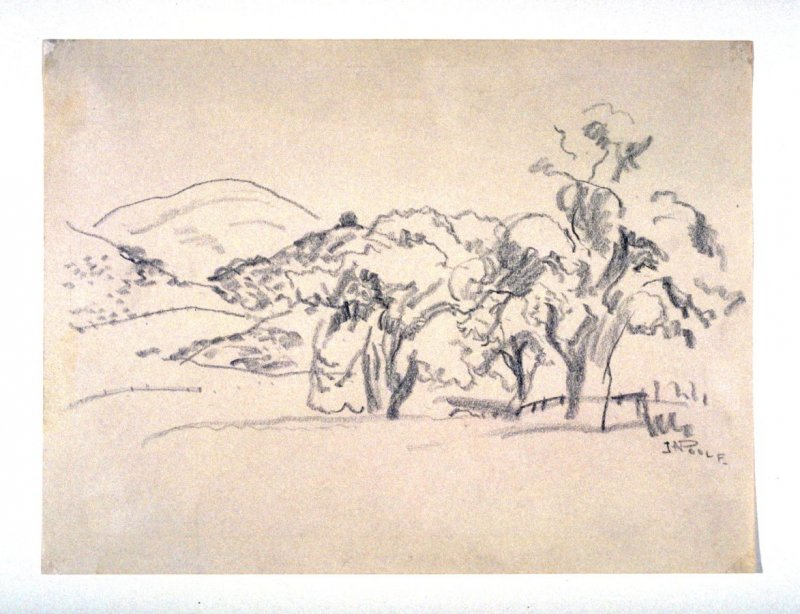 Hilly California Landscape with Oaks
