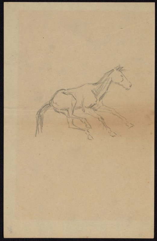 Sketch of a Galloping Colt