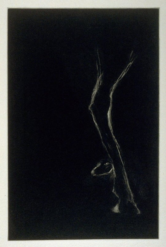 Horse Leg Dog Head, third plate in the book Parts by Robert Creeley (San Francisco: Greve/Hine, 1993)