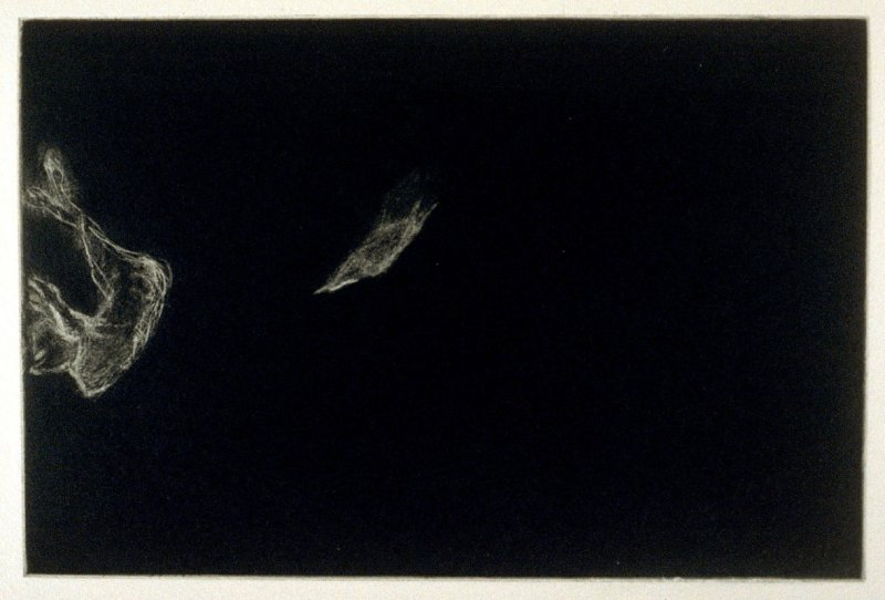 Bird and Calf, eighth plate in the book Parts by Robert Creeley (San Francisco: Greve/Hine, 1993)
