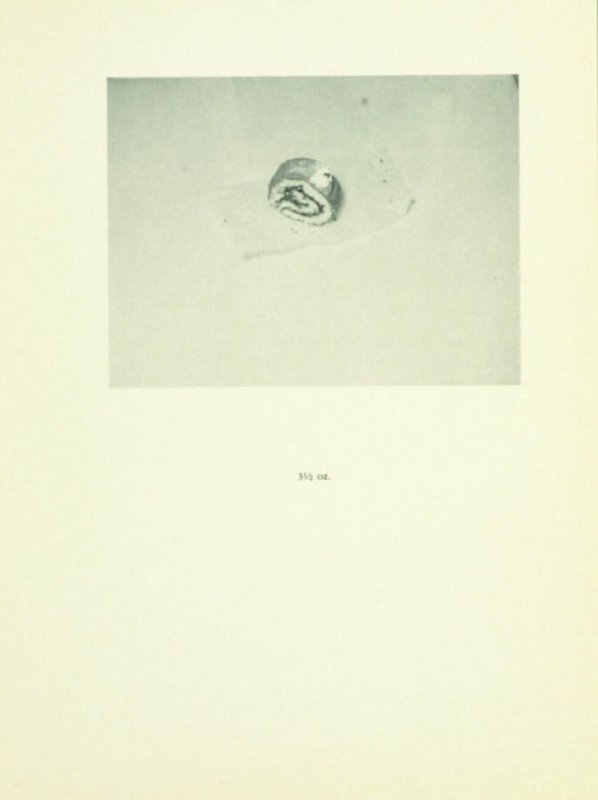 Untitled, illustration 2, in the book Babycakes with Weights (New York: Multiples, Inc., 1970)
