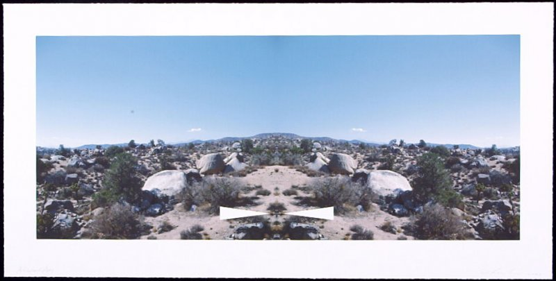 Bow-Tie Palm Springs, from the series Bow-Tie Landscapes