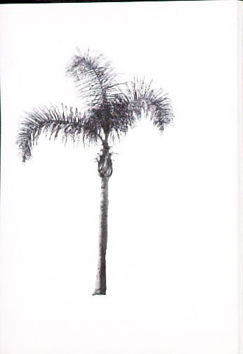 """Illustration 14, recto to """"N. E. corner of Gower St. & Scenic Ave.,"""" in the book A Few Palm Trees (Hollywood: Heavy Industry Publications, 1971)"""