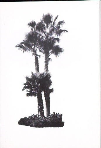 """Illustration 2, recto to """"Island at Hollywood Blvd. & La Brea Ave.,"""" in the book A Few Palm Trees (Hollywood: Heavy Industry Publications, 1971)"""
