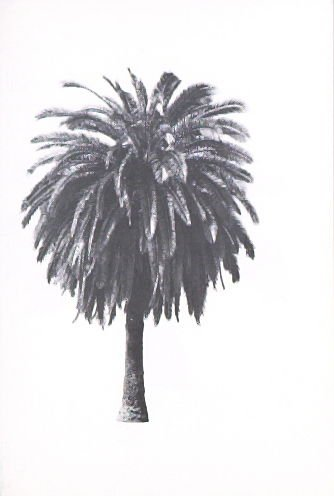 """Illustration 6, recto to """"S. W. corner of Beachwood Dr. & Graciosa Dr.,"""" in the book A Few Palm Trees (Hollywood: Heavy Industry Publications, 1971)"""