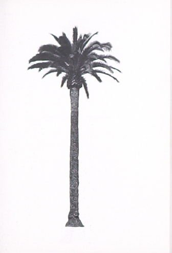 "Illustration 9, recto to ""N. W. corner of Doheny Dr. & Elevado Ave.,"" in the book A Few Palm Trees (Hollywood: Heavy Industry Publications, 1971)"