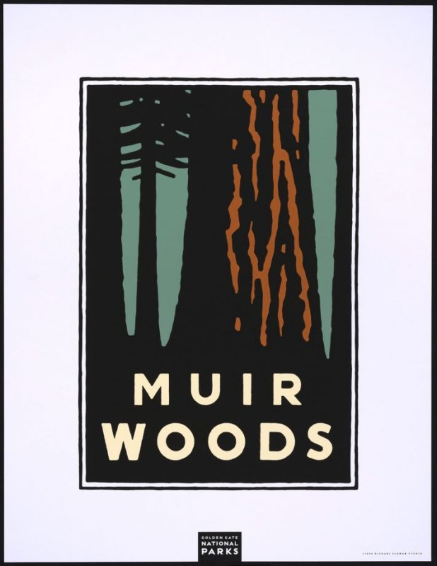 Muir Woods, from a series of posters for the Golden Gate National Parks