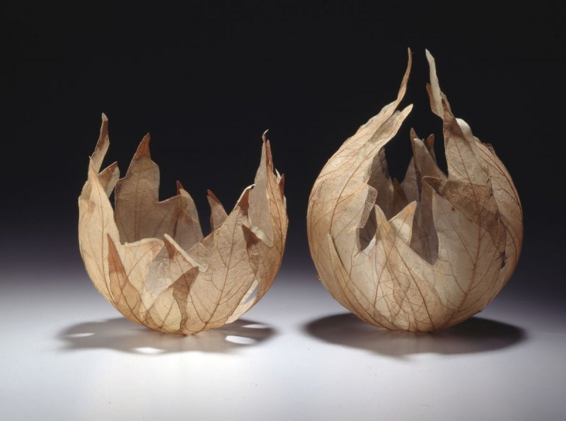 Leaf Vessel XXIV