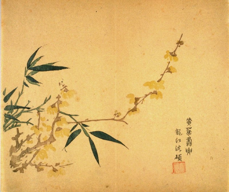 Allspice(?) and Bamboo (growing from lower left), No.9 from the Volume on Plums - from: The Treatise on Calligraphy and Painting of the Ten Bamboo Studio