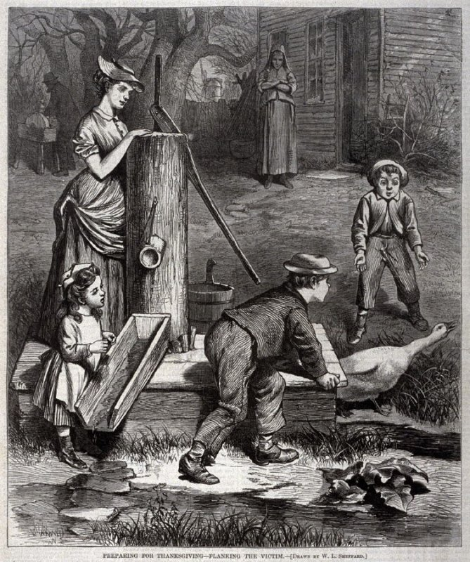 Preparing for Thanksgiving - Flanking the Victim - p.1084 from Harper's Weekly 6 December 1873